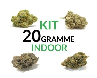 Kit 20 Gramme Indoor justbob.de