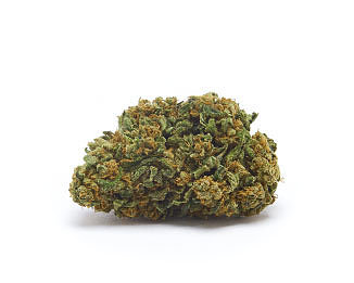 Orange Bud CBD Cannabis