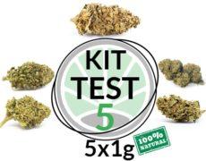 CBD Blüten Cannabis 5 g/5 Sorten