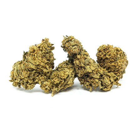 Blüten White Widow cannabis cbd