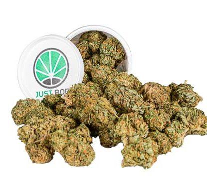 Krug Cannabis cbd Blüten Justbob Bubblegum