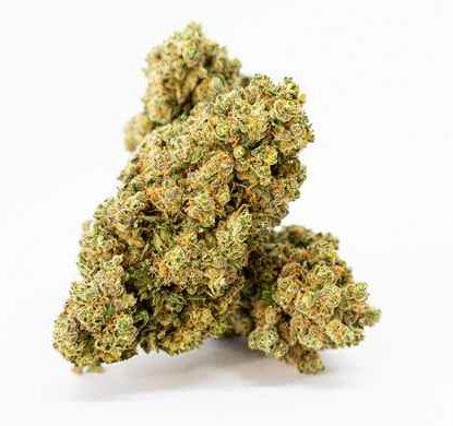 gorilla-glue-cbd-cannabis-bluten