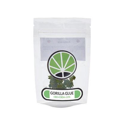 gorilla-glue-weed