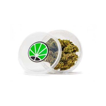 gorilla-glue-weed-cannabis