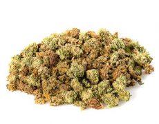 CBD Blüten der Sorte Small Buds Mix