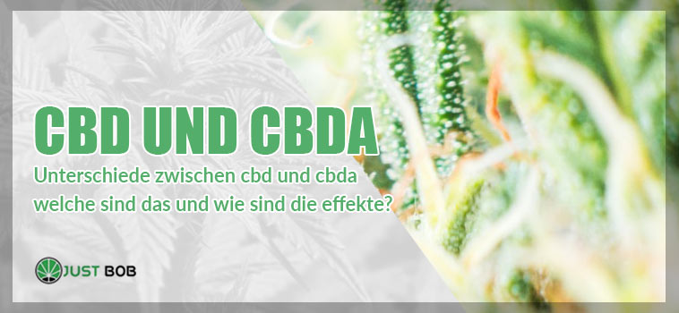 CBD und CBDA