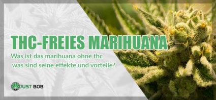THC-freies Marihuana