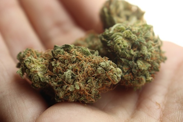 Wie man Marihuana
