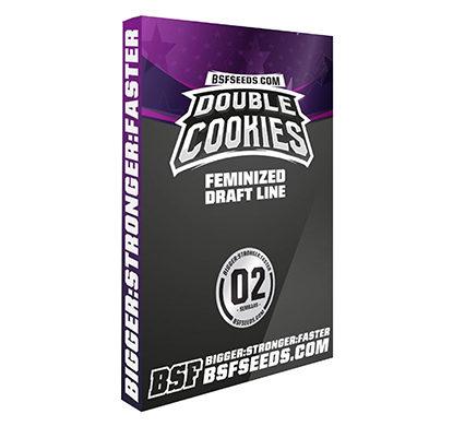 double-cookies-cannabis-samen
