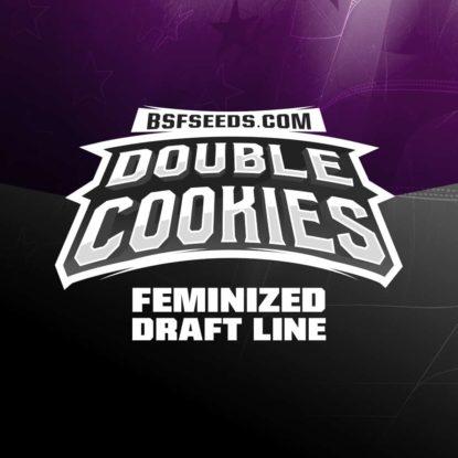 double-cookies-cannabis-samen-bestellen