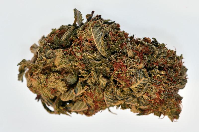 die legale masterkush marijuana