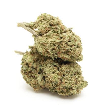do-si-dos-cbd-cannabis-bluten