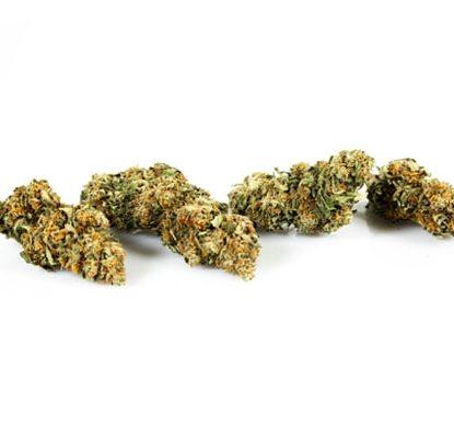 sweet berry cannabis pflanzen