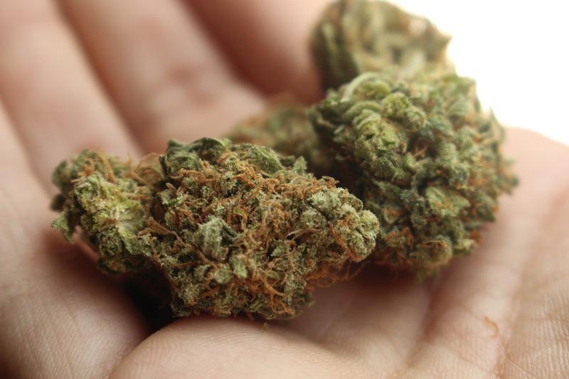 cannabis marihuana tee bluten machen