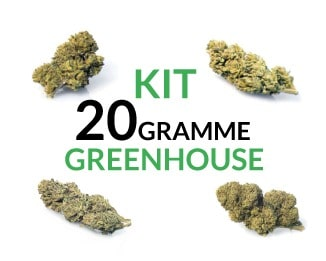 kit 20 gramme Greenhouse justbob.de