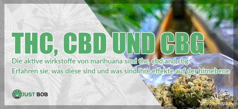 thc cbd cgb