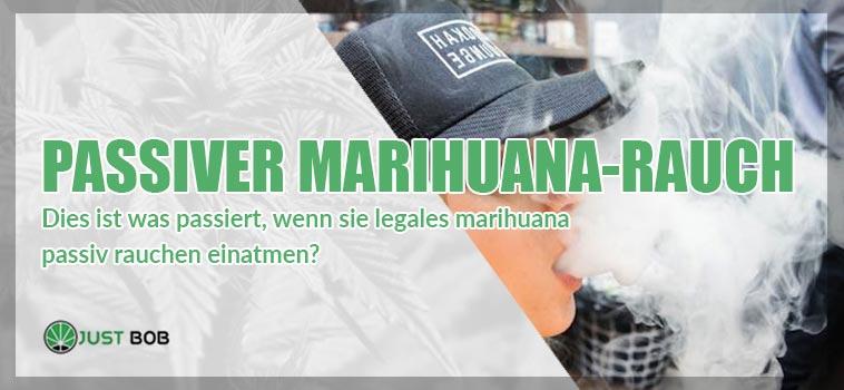 hat passiver marihuana rauch