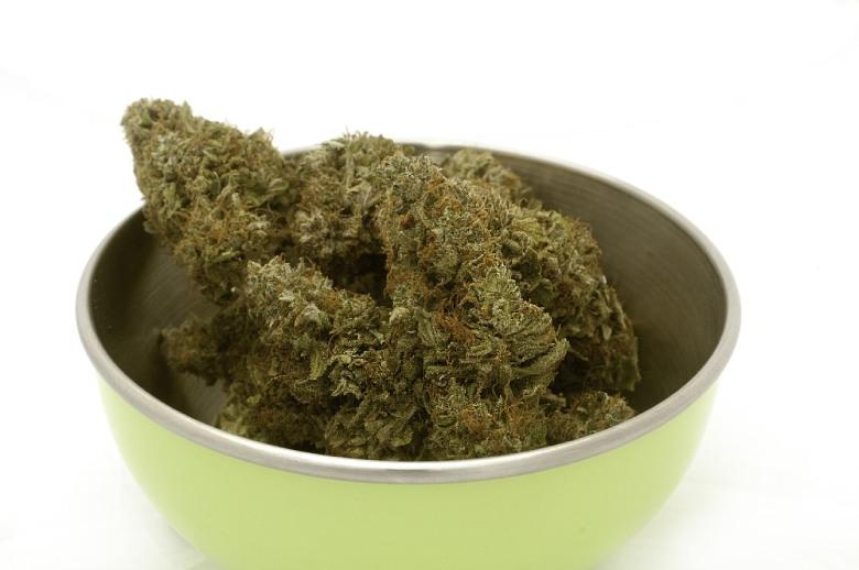 Der Anbau von legalem Marihuana