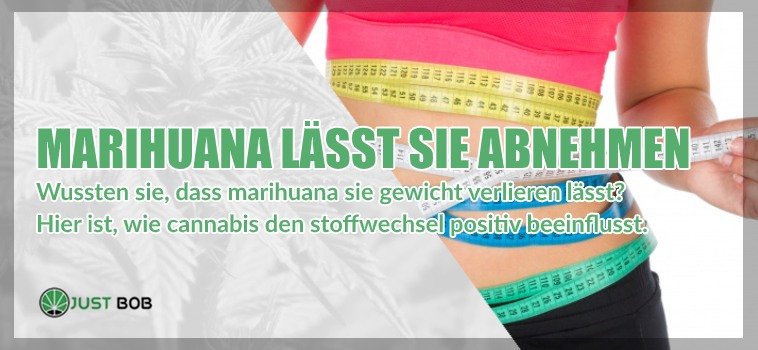 Marihuana cbd lässt Sie abnehmen