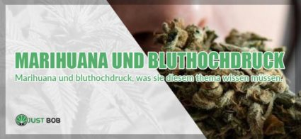 Marihuana und Bluthochdruck3