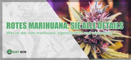 Rotes Marihuana light