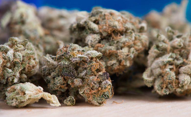 therapeutischen Wirkungen von CBD Cannabis