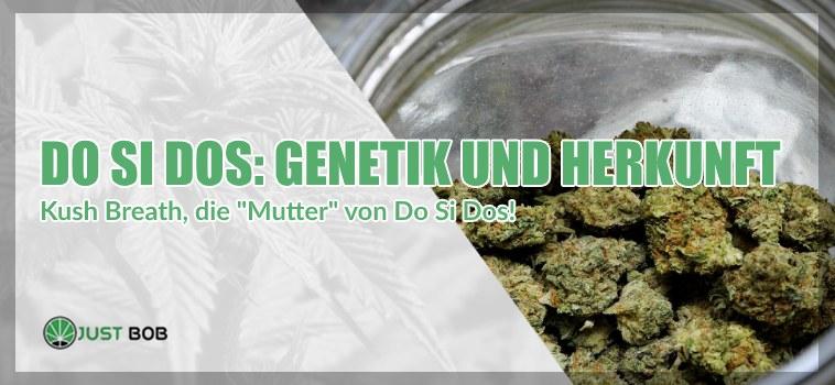 Do Si Dos cannabis cbd