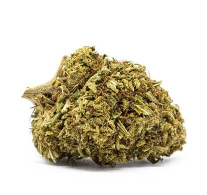Orange Bud Bluten Cannabis