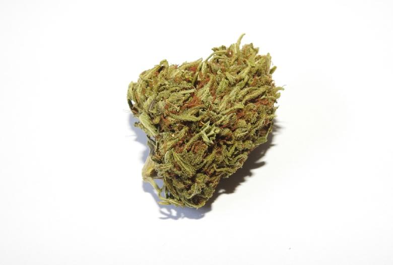 cannabis cbd lemon cheese