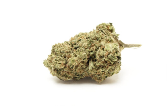 do si dos licht cannabis