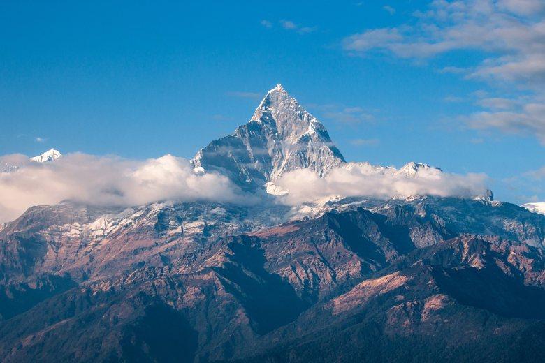 im Himalaja heimisches Marihuana kush