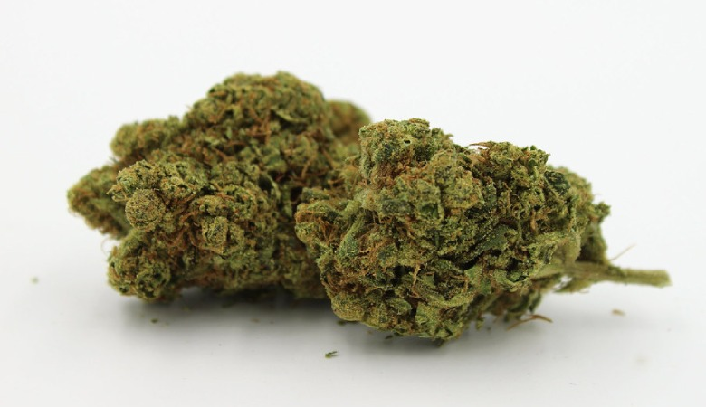 leicht marihuana california haze
