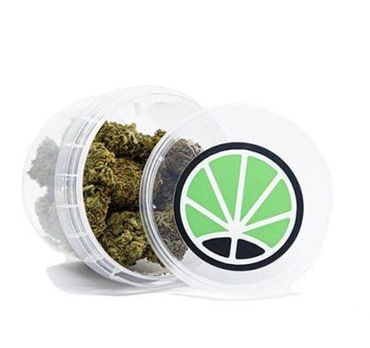 orange bud cbd cannabis bluten