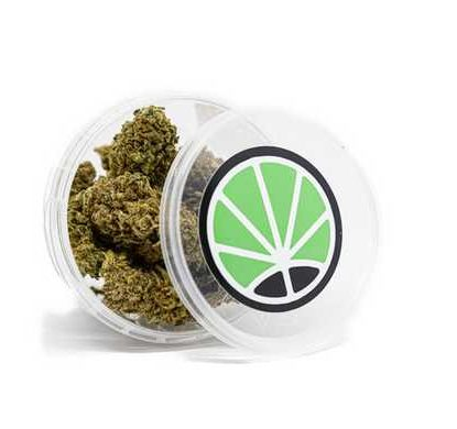 Packaging der Sorte White Widow CBD Gras kaufen