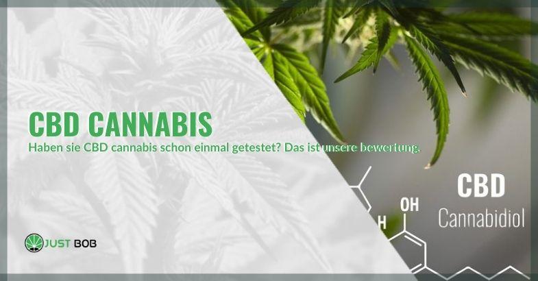 Wenn Sie noch nie CBD-Cannabis konsumiert haben, lesen Sie unsere Rezension