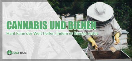 Cannabis cbd und Bienen