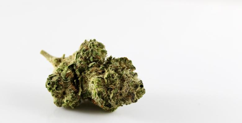Die Hauptgerüche von CBD Cannabis.