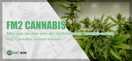 FM2 Cannabis und cbd marijuana