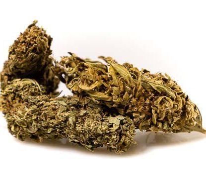 Outdoor Buds Mix Cannabis