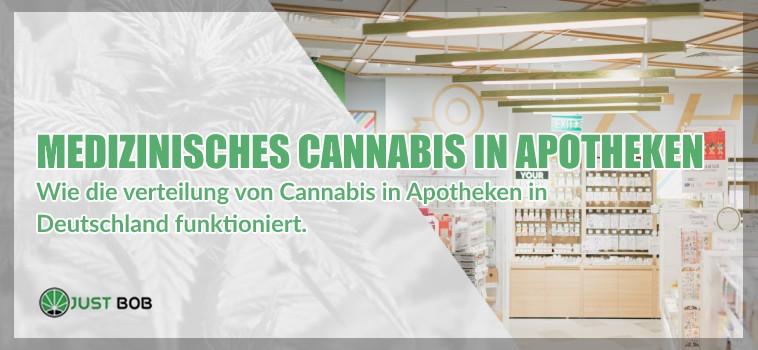 Medizinisches Cannabis und legalem gras