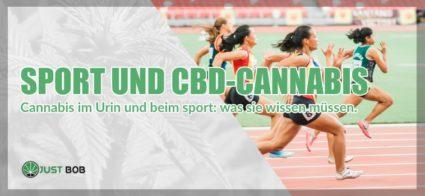 Sport und CBD Cannabis