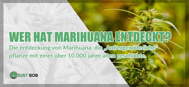 Wer hat Marihuana cbd entdeckt