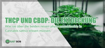 legalen cannabis THCP und CBDP