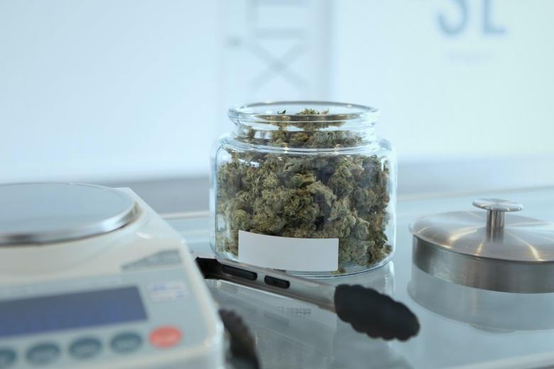 versiegelte Gläser mit Cannabis cbd