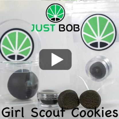 Girl Scout Cookies Video
