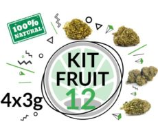 Test Kit Fruit 4 Cbd Cannabis Sorten für 12 Gramm