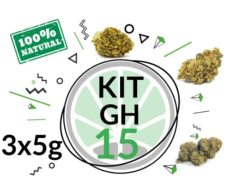 mix gras cbd kit gh