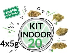 Test Kit INDOOR 4 CBD Gras Sorten für 20 Gramm