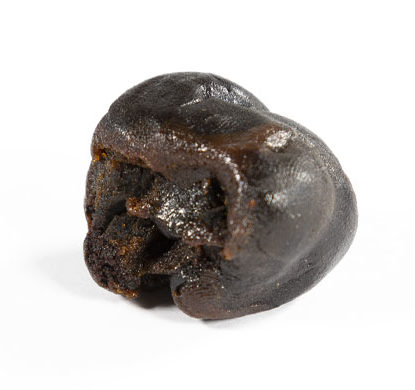 Gelato 33 cbd Haschisch Sorte