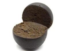Girl Scout Cookies cbd Haschisch Sorte